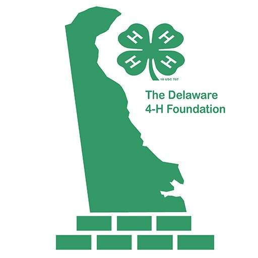 Delaware 4 H Foundation